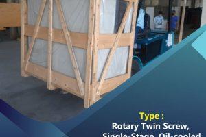 Rotary Twin Screw